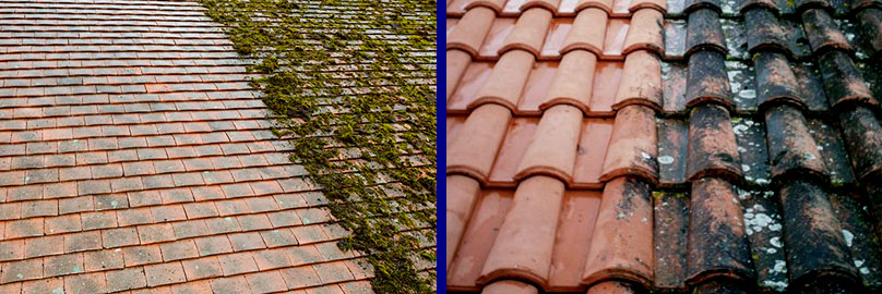 roof cleaners in berkshire